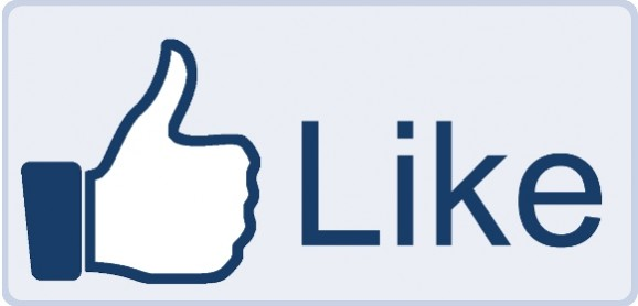 facebook like icon. You know as in the like icon