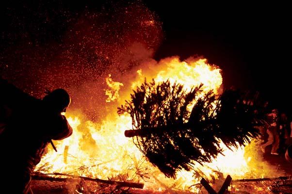 Christmas Trees Wayne's Worlds - Christmas Trees On Fire